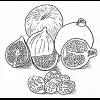 Alimentos en la Biblia: Frutas