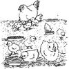 El Aumento de la Producción de Pollos