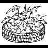 Jardinería en Espacios Reducidos