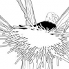 Les Animaux de la Bible - L'Aigle